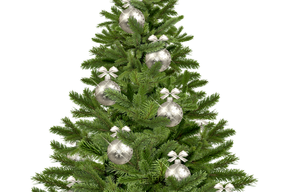 christmas-tree-1853582_1280
